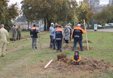 11 Milyon Fidan Kampanyasında Gemlik'te de fidanlar toprakla buluştu